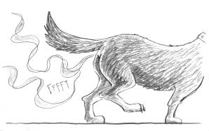 EP Dogfarts